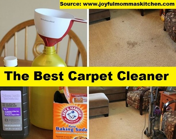 The Best Carpet Cleaner